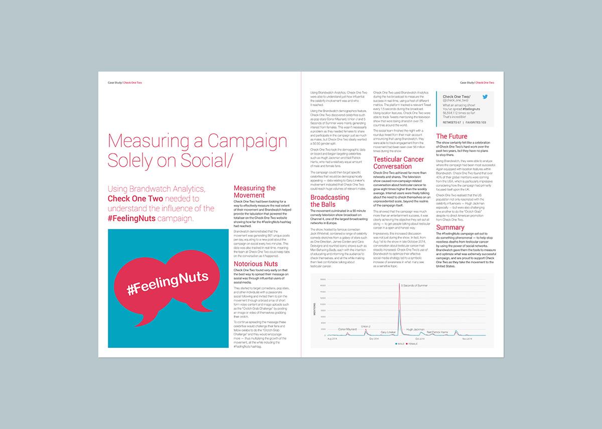 Brandwatch-Report_Pages-Portfolio_COT-03