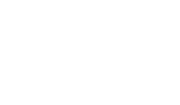 logo_birkbeck-university